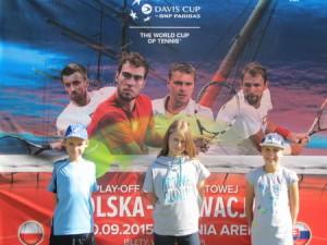 Rozgrywki o Puchar Davisa